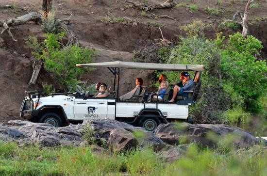 3nights-4days Madikwe River Lodge Fly...
