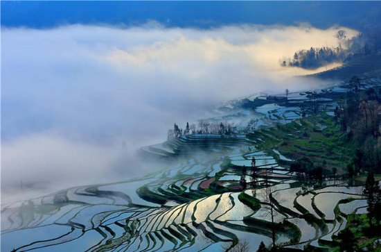 Longji Terraced Field & Yao Minority...