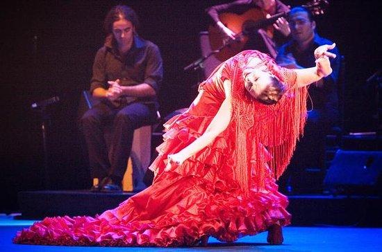 Seville Pure Flamenco Tour