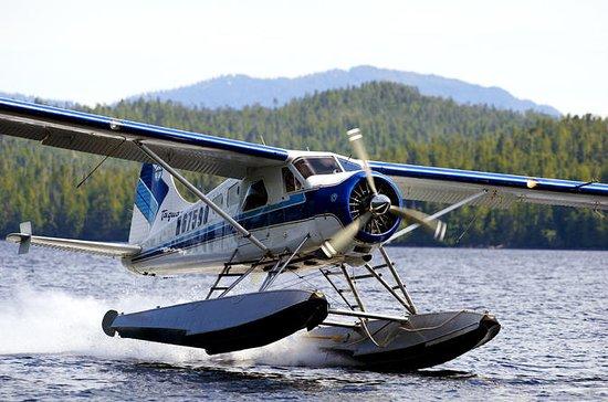 Ketchikan Floatplane Ride & Crab Feast