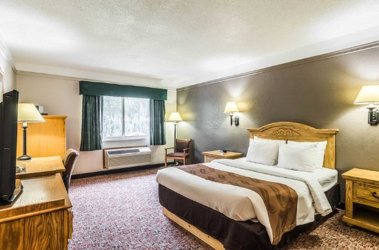 Buffalo, WY: Guest room with queen bed(s)