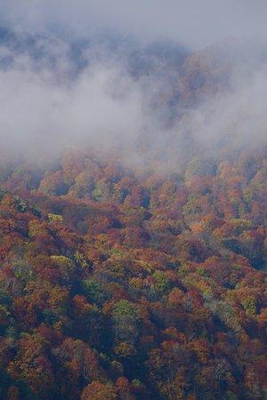 妙高市, 新潟県, 笹ヶ峰牧場の遠景