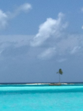 منتجع Gili Lankanfushi Maldives صورة فوتوغرافية