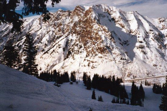 Snowbird Ski and Summer Resort: Mount Superior