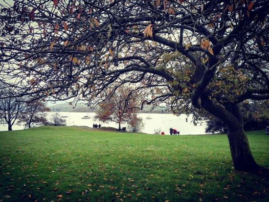 آمبل سايد, UK: الحديقة بفصل الخريف