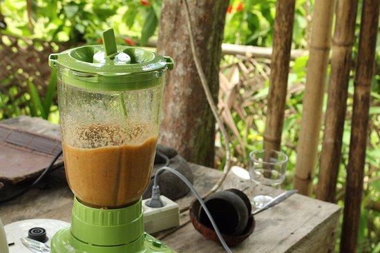 Pejeng, Indonesia: Making organic juices