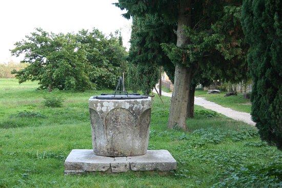 Torcello Foto