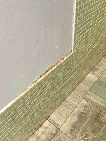Alcester, UK: Mound and black damp marks in gents showers in the Spa. It's been like this for years. Poor.