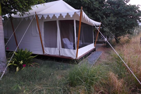 Khem Villas: the tent