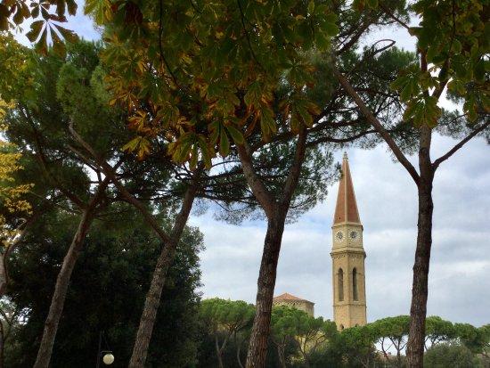 Arezzo, Italy: Árvores do parque fazendo moldura para a torre do Duomo