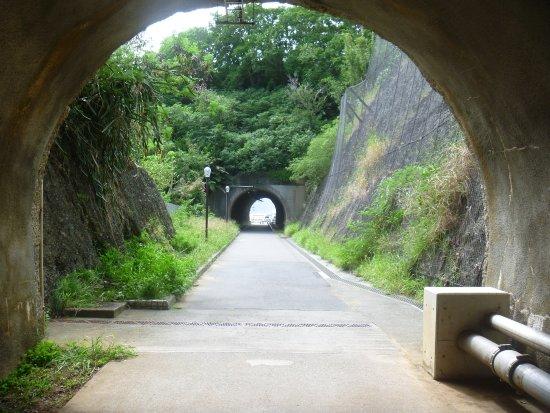 Ogasawara Kankou