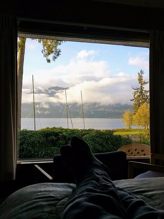 Quinault, WA: View from bed