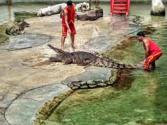 Samutprakan Crocodile Farm and Zoo