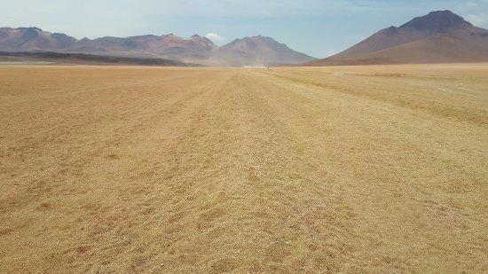 Potosi Department, Bolivie : Paisaje del desierto.