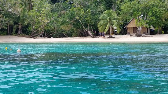 Qamea Island, Fidji : Snorkeling available right off the beach, or on free guided tours (via a short boat ride)