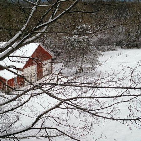 Sodus, Νέα Υόρκη: First Snow on Maxwell Creek-Nov. 2017