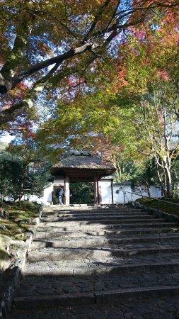 Anrakuji Temple: DSC_0144_large.jpg