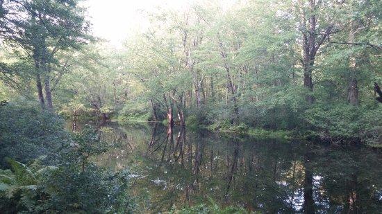 Swanton, VT: Gorgeous