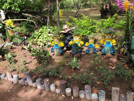 Lam Dong Province, Vietnam: photo3.jpg