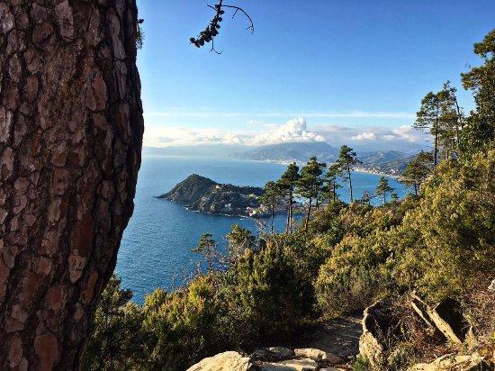 Casarza Ligure, Italien: La nostra spettacolare Liguria