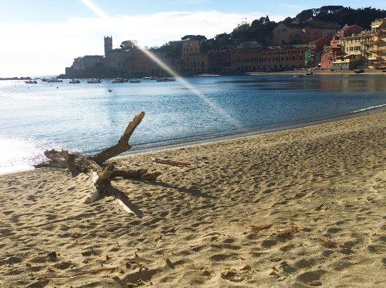 Casarza Ligure, Italien: Le nostre spiagge di Sestri Levante