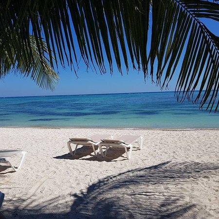 PavoReal Beach Resort Tulum: IMG_20171123_110029_516_large.jpg
