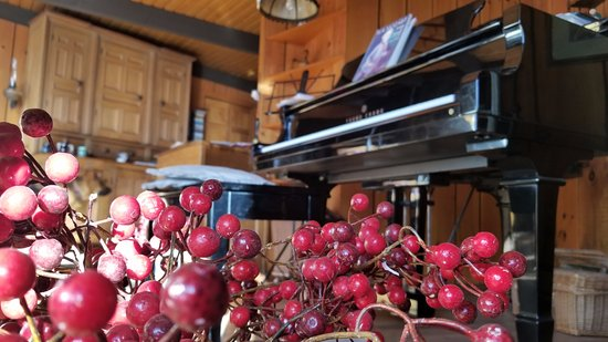Algonquin Highlands, แคนาดา: Mr. Piano