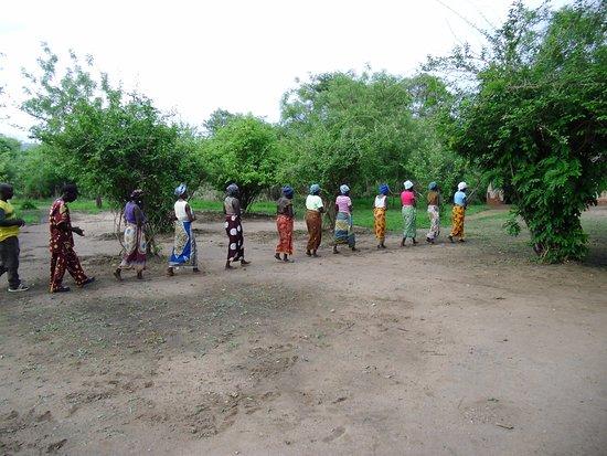 Lower Zambezi National Park: UPDATED 2018 Top Tips Before ...
