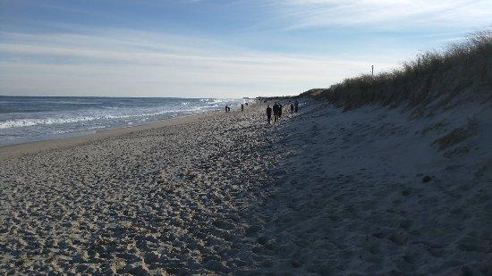 Nauset Beach: IMG_20171123_135125_large.jpg