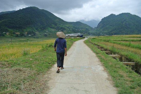 Yen Bai Province, Vietnam: Mann mit Reishut