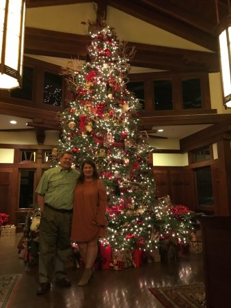 Thanksgiving dinner and a beautiful Christmas tree to start the holiday season!