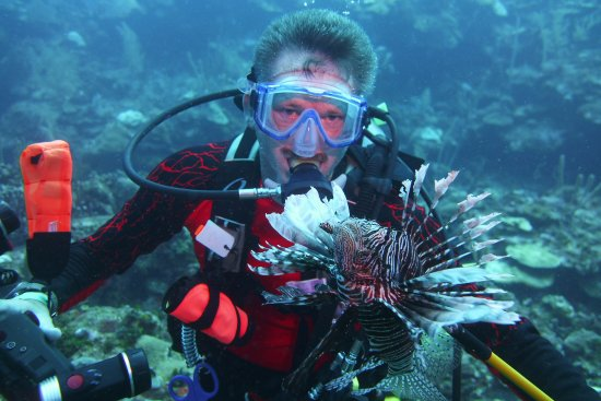 Turquoise Bay Dive & Beach Resort: Get your Lionfish permit!!!