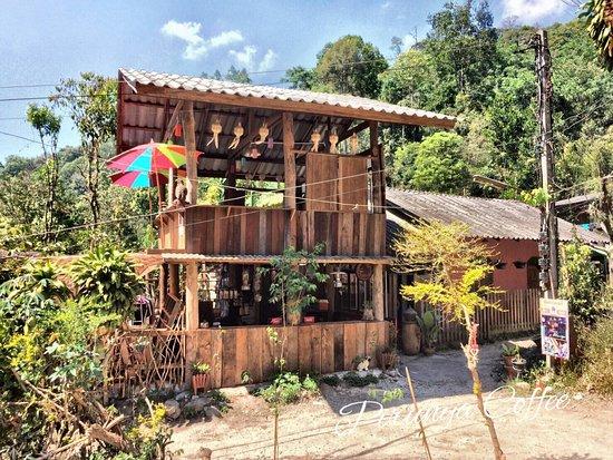 ร้านกาแฟที่มีกาแฟสายพันธุ์ให้เลือกดื่มมากมาย แห่งเดียวในบ้านแม่กำปองและในเมืองไทย ด้วยวิธีชงแบบไ