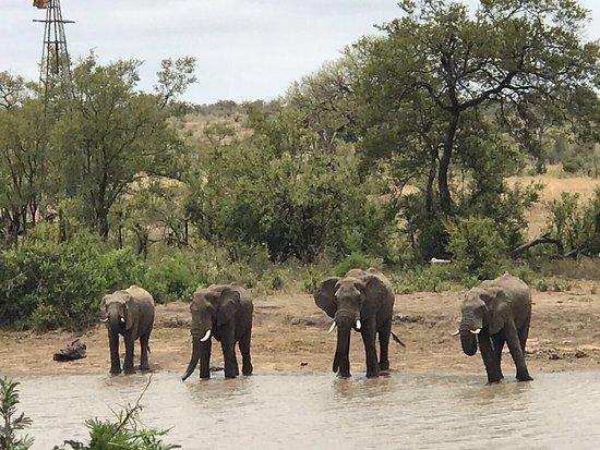 Provincia de Limpopo, Sudáfrica: photo1.jpg