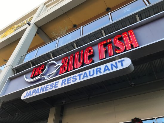 The blue fish picture of the blue fish bayou place for Places to go fishing in houston