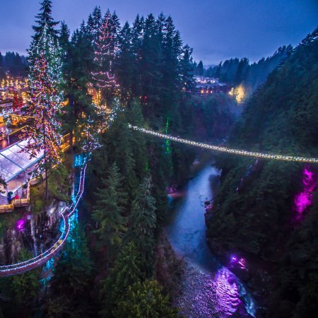 North Vancouver, Canada: Canyon Lights