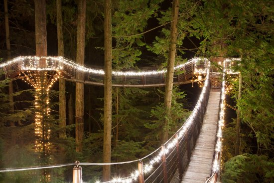 North Vancouver, Canada: Treetops Adventure at Canyon Lights