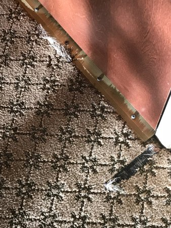 Holiday Inn Express Hotel & Suites Chestertown : Carpet needs replacement or repair.