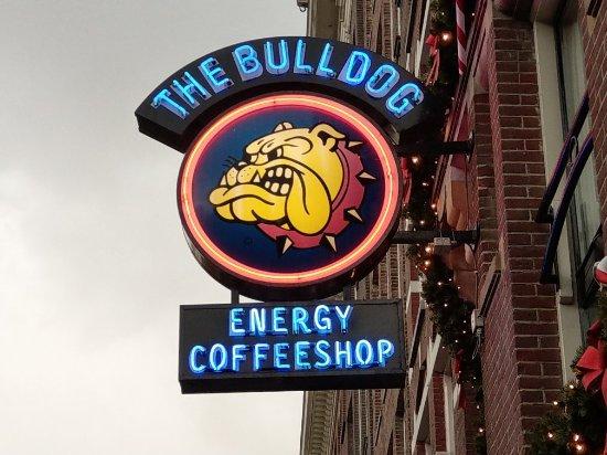 The Bulldog Hotel: IMAG1932_large.jpg
