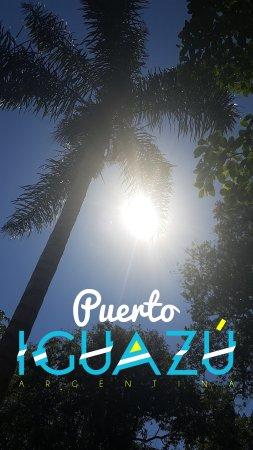 Cabanas Luces de la Selva: Snapchat-825396161_large.jpg