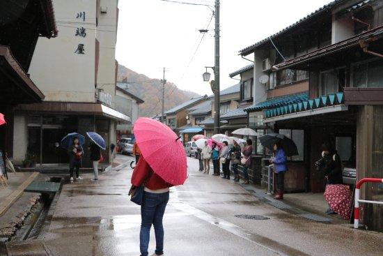 Minamiechizen-cho, Ιαπωνία: photo4.jpg