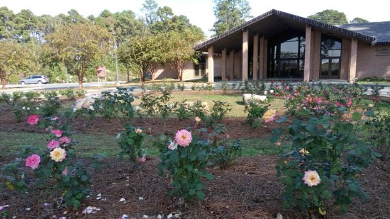 The american rose center picture of gardens of the american rose center shreveport tripadvisor for The gardens of the american rose center
