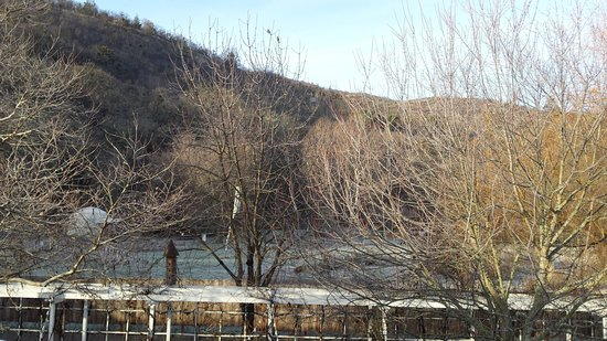 The landscape during a frosty winter stay at Lithia Springs Resort