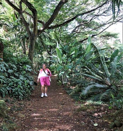 National tropical botanical garden poipu all you need - National tropical botanical garden kauai ...