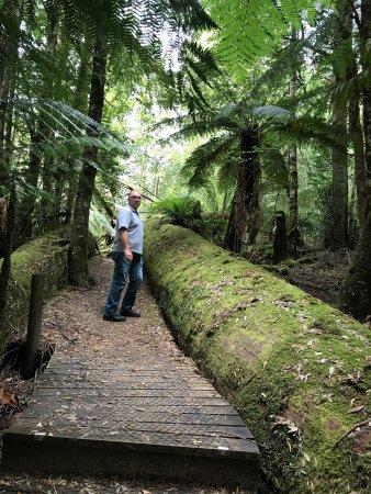 Maydena, Austrália: photo2.jpg