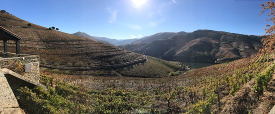 Covas do Douro, Portugal : photo0.jpg