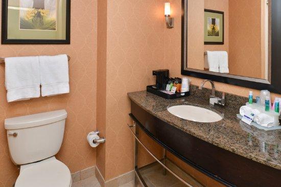Holiday Inn Express Hotel & Suites Dallas South-DeSoto: Guest Bathroom