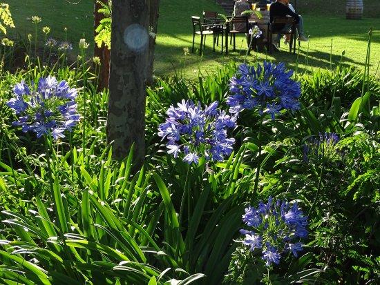 Oaks Cypress Lakes Resort: photo5.jpg