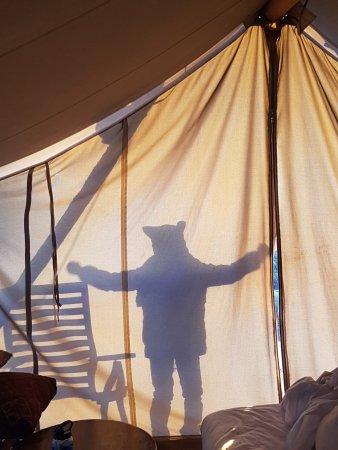 Under Canvas Moab Tent puppet show & Tent puppet show - Picture of Under Canvas Moab Moab - TripAdvisor
