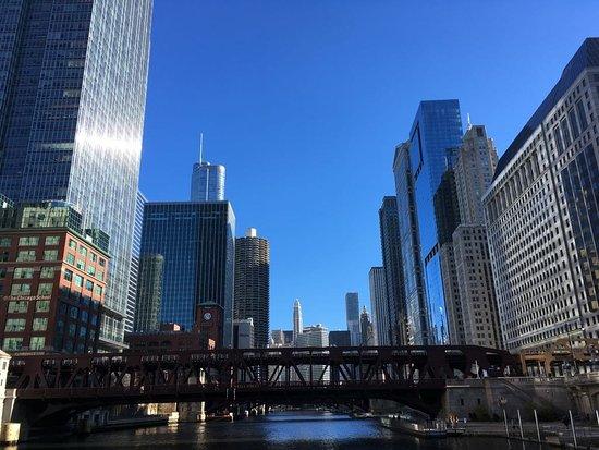 Chicago Line Cruises: IMG-20171124-WA0003_large.jpg